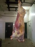 Мясо говядины на кости бык, корову охлд/зам Казань