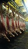 Мясо быка в П/т охл/зам доставка из г.Ижевск