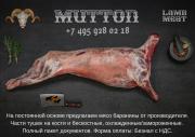 Баранина в отрубах охл/зам от производителя Москва