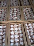 Корнишоны (тушка цыпленка) 3-х калибров охл/зам доставка из г.Москва