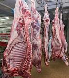 Мясо оптом куриное, говядина, баранина Москва