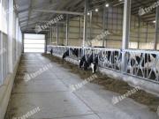 Бетонные плиты для молочного животноводства и растениеводства Грязи