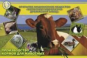 Дрожжи кормовые, комбикорм доставка из г.Волжск