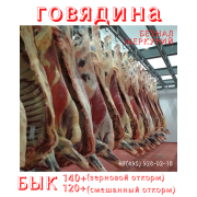 Говядина охлажденная в четвертях. Бык (зерновой и смешанный откорм) Казань