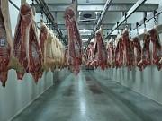 Продаю Разделка свиная н/к зам, категория - I (беконная), II (мясная – молодняк) в Москве  Москва