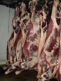 Продаю Блочная говядина  ГОСТ, ТУ, blak angus, HEREFORD, шаролезская, лимузинская, Wagyu, б/к,  зам, в Новосибирске  доставка из г.Новосибирск