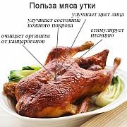 Продаю Тушка утки  ТУ, н/к,  охл, в Санкт-Петербурге  Санкт-Петербург