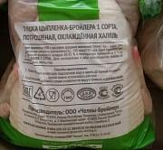 Продаю Куриные каркасы зам, челны-бройлер от 100 кг, от 1 тонны в Ижевске  Ижевск