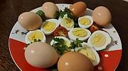 Яйцо куриное Халяль б/к, зам,  от 100 руб. в Ливнах  доставка из г.Ливны