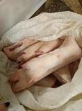 Продаю Ноги свиные , зам, от 100 кг, от 1 тонны  в Ижевске  Ижевск