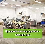Многопрофильное производственное предприятие доставка из г.Ташла