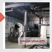 Продаю Линии для убоя скота Новый в Волгограде  Волгоград