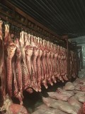 Продаю Полутуши Говяжьи коров, бычков, телят  ГОСТ, н/к,  зам, в Барнауле  Барнаул