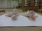 продам Лапы,любые куриные,свиные субпродкуты,продукцию Халяль ГОСТ-ЦБ Белгород