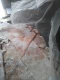 Свиные желудки (мешочком очищенные) Новосибирск