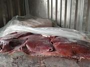 Продаю Печень свиная РФ зам, от 100 кг  в Новосибирске  Новосибирск