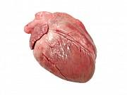 Сердце свиное Новосибирск