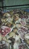 Головы свиные Новосибирск