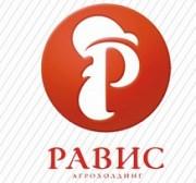 Крылышко ЦБ в/к             300гр Челябинск