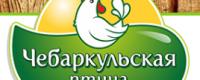 ПФ Чебаркульская птица